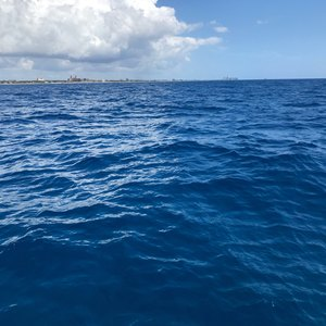 West Palm Beach scuba diving conditions on May 31, 2019