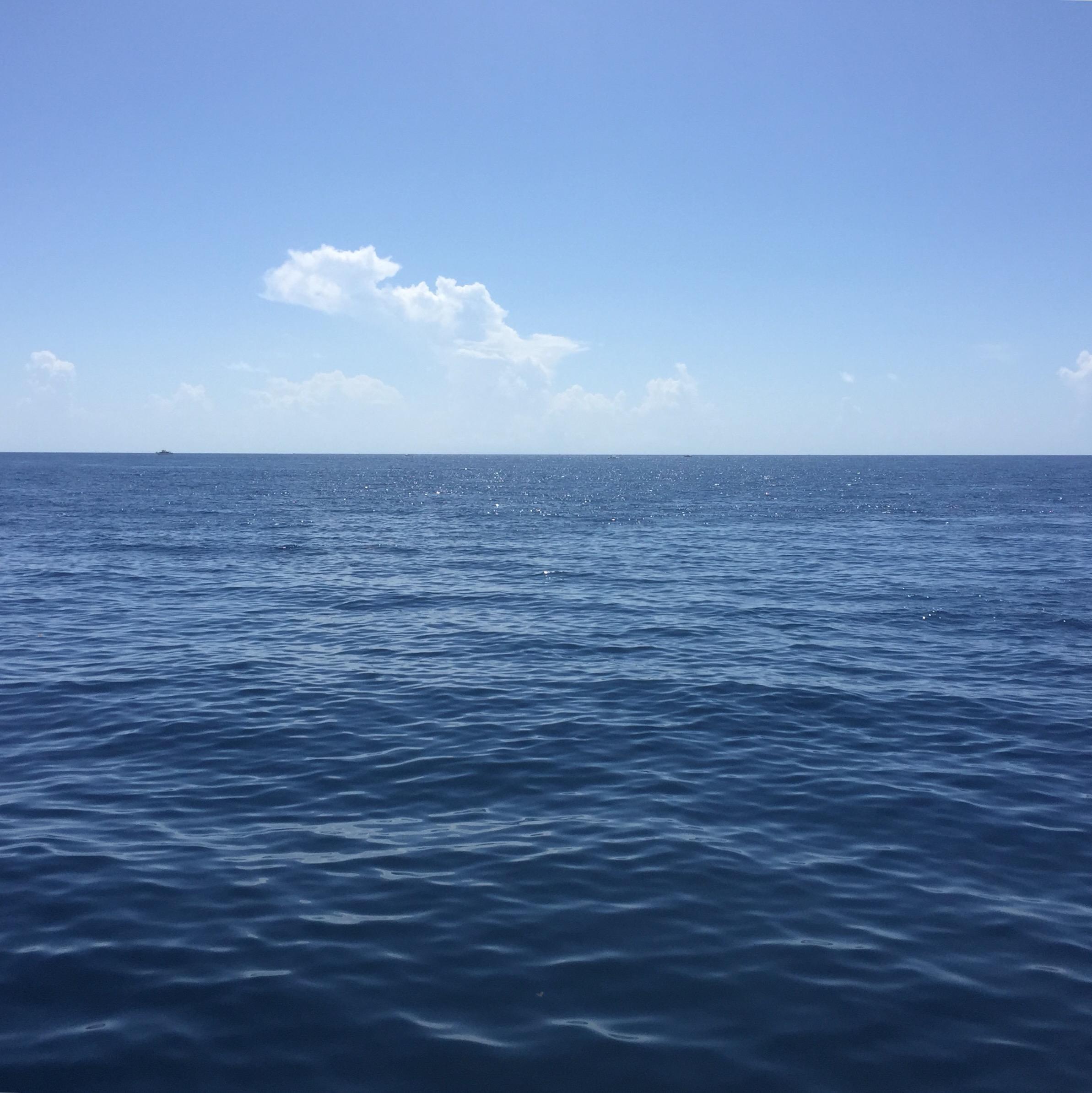 Scuba Diving Conditions West Palm Beach