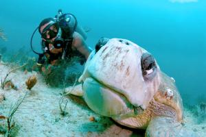 Captain Alex Edwards and his dive buddy Turtle