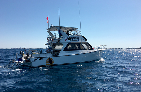 We have daily 2-tank SCUBA charter trips in West Palm Beach on the dive boat Narcosis