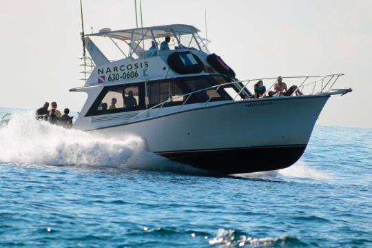 We have daily 2-tank SCUBA charter trips in West Palm Beach on the fast and spacious dive boat Narcosis